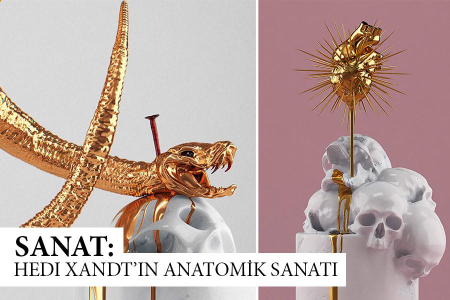 Anatomik-slayt1